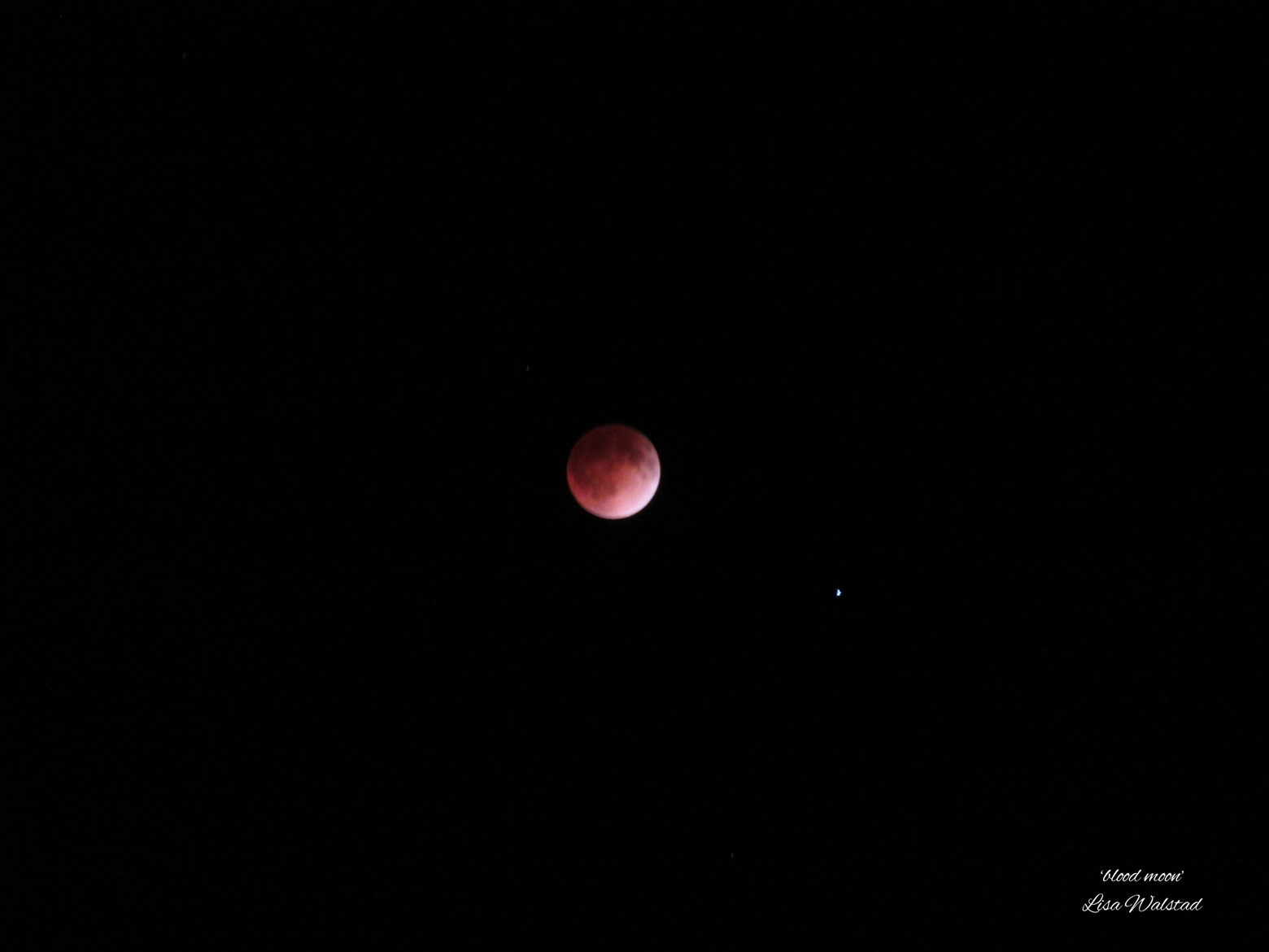 Blood Moon April 2014