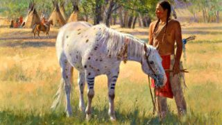 Sioux Nation - Lakota